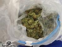 נעצרו 2 חשודים בסחר בסמים