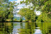 טיול מאורגן ליער השחור למשפחות – חוויה מושלמת
