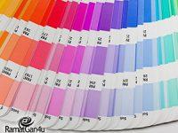 בחירת צבעים נכונה לעיצוב וצביעת הבית