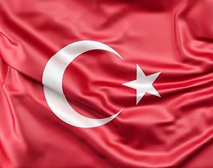 השתלת שיער בישראל לעומת טורקיה: איך תדעו איפה לעבור את ההליך?